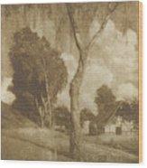 Motiv Aus Pommern  Wood Print