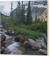Mount Edith Cavell Wood Print