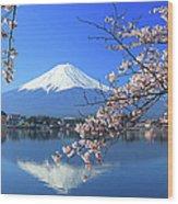 Mount Fuji And Sakura Wood Print