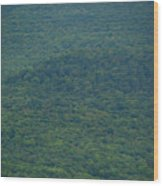 Mount Greylock Reservation's Trees Wood Print