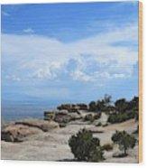 Mount Lemmon Wood Print