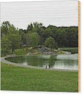 Mount Royale Parc Wood Print