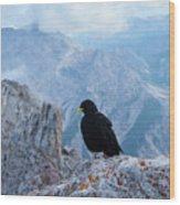 Mountain Jackdaw Wood Print