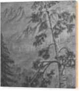 Mountain Outlook Wood Print
