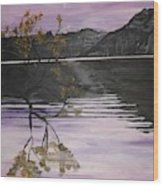 Mountain Pass Wood Print