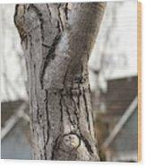 Mr. Skeptical  Wood Print