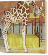 Ms Kitty And Her Giraffe  Wood Print