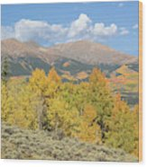 Mt. Elbert Autumn Wood Print