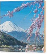 Mt Fuji And Cherry Blossom At Lake Wood Print