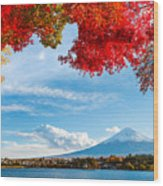 Mt. Fuji In Autumn Wood Print