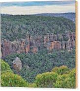 Mt Piddington - Nsw - Australia Wood Print