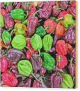 Multi Mini Hot Pepper Variety Wood Print