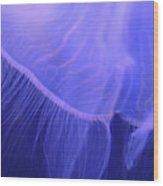 Mystical Jellyfish Wood Print