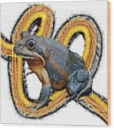 N Is For Northern Banjo Frog Wood Print