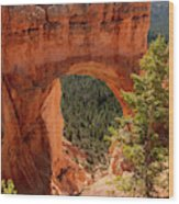 Natural Bridge - Bryce Canyon - Utah - Vertical Wood Print