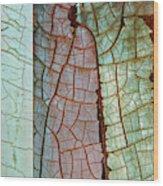 Nature Or Nurture Wood Print