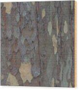 Natures Beautiful Patterns Wood Print
