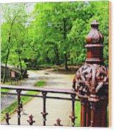 New York's Central Park Winterdale Arch Railing Cast Iron Art Wood Print