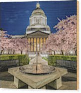 Night At The Capitol Wood Print