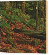 Northside Of Mount Greylock At Wood Print