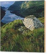 Norway, Maloy, Nordfjord, Alpine Tundra Wood Print
