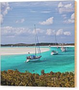 Ocean View From Warderick Cay In Exumas Wood Print