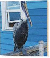 Oceanside Pelican Right  Wood Print