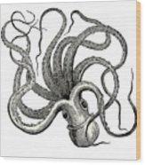 Octopus Octopus Vulgaris - Vintage Wood Print