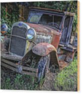 Old Model Aa Ford In The Jungle 2 Wood Print