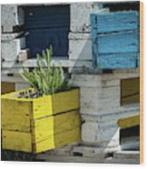Old Pallet Painted White, Blue And Yellow Used As Flower Pot Wood Print