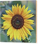 One Bright Sunflower Wood Print