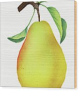 One Yellow Juicy Pear Wood Print