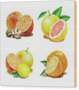 Orange Grapefruit Lemon Watercolor Fruit Illustration Wood Print
