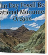 Oregon - John Day Fossil Beds National Monument Blue Basin Wood Print