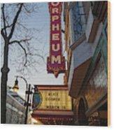 Orpheum Theater Madison, Alice Cooper Headlining Wood Print