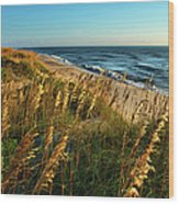 Outer Banks View Wood Print