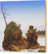 Outlying Tillamook Bay Wood Print