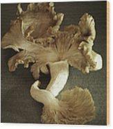 Oyster Mushrooms Still Life Wood Print