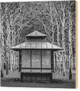 Pagoda Wood Print