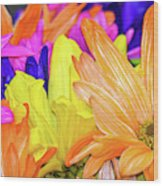 Painted Daisies Wood Print