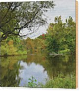 Painted Fall On The Back Pond Wood Print