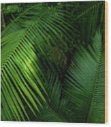 Palm Saturday Wood Print