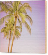 Palm Trees And Pink Sky Wood Print