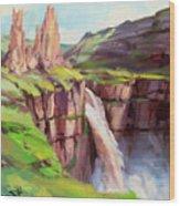 Palouse Falls Rush Wood Print
