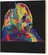 Panda Little Bear Australia Animal Color Designed Wood Print