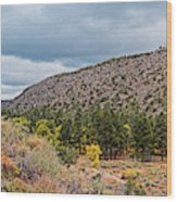 Panorama Of Cliff Dwelling And Fall Cottonwoods In Frijoles Canyon - Bandelier National Monument  Wood Print
