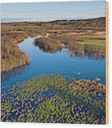 Panorama Of Mouth Of Betsie River Wood Print