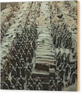 Panorama Of Pit 1, Terra Cotta Warriors Wood Print