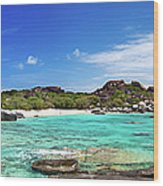 Panorama Of Spring Bay And The Baths Wood Print