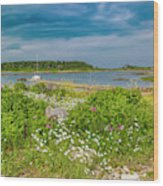 Paradise In Maine Wood Print